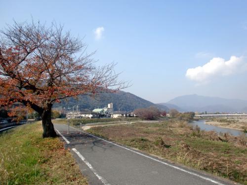 サイクリングロード13秋.jpg