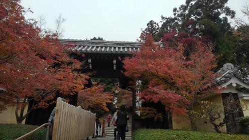 光明寺(入り口).jpg