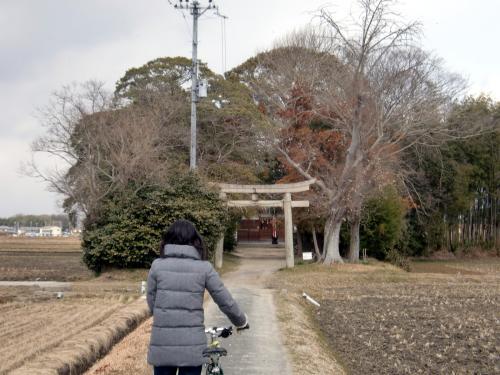八幡市石田神社.jpg
