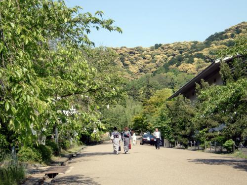 円山公園201305.jpg