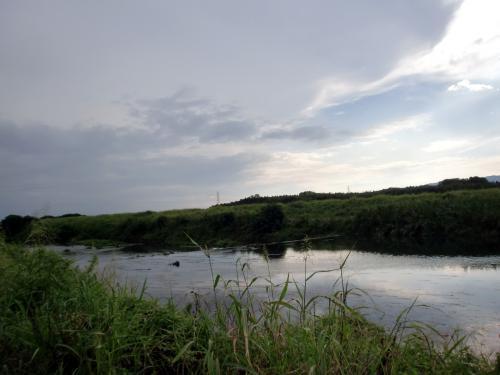 夕暮れの河原.jpg