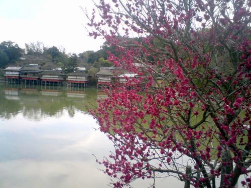 天満宮2014池のほとり2.jpg