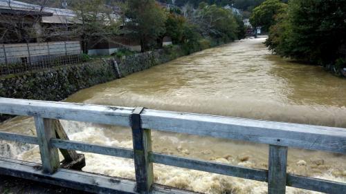 嵐山川の流れ2.jpg