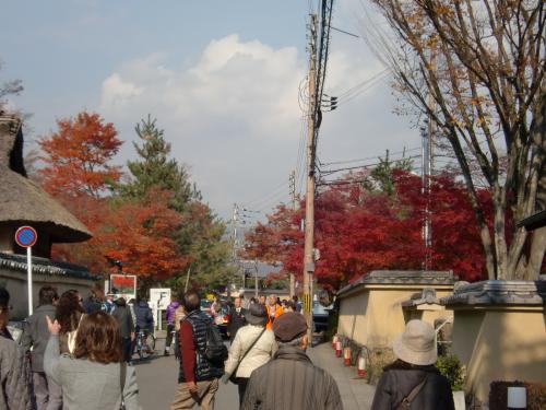嵐山13秋.jpg