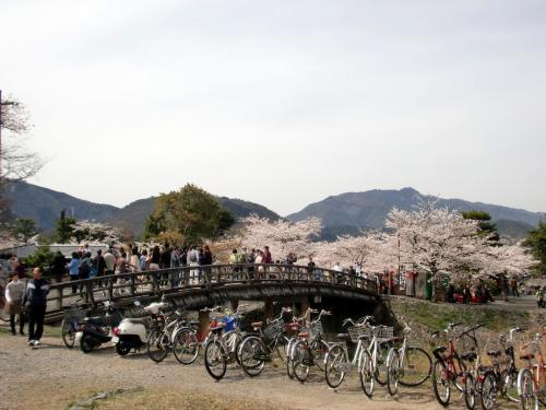 嵐山20130401.jpg