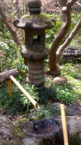 植物園55.jpg
