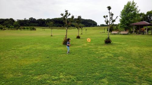 淡路島公園芝生.jpg