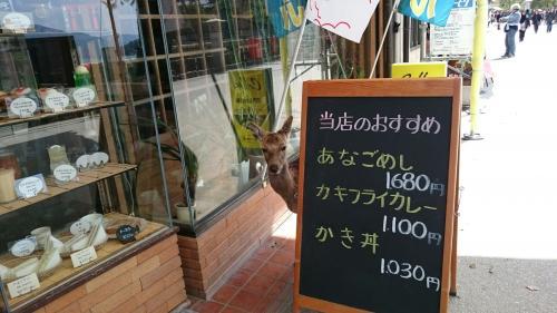 看板と鹿.jpg