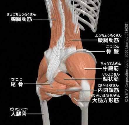 筋肉mann .jpg