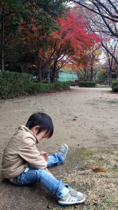 紅葉201611.jpg