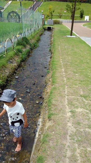 西代小川201708.jpg
