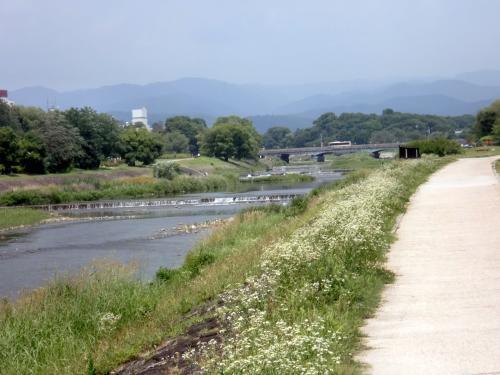 鴨川暑い景色.jpg